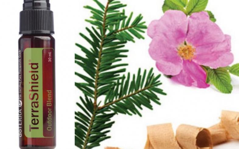TerraShield – skuteczny środek odstraszający owady